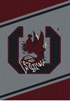 Milliken College Team Spirit (NCAA) South Carolina 74364 Spirit Rectangle (4000019224) 5'4