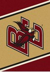Milliken College Team Spirit (NCAA) Boston College 68882 Spirit Rectangle (4000019421) 2'8