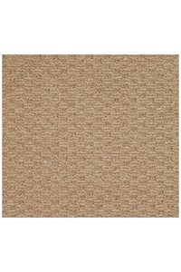 Capel Rugs Creative Concepts Raffia - Rectangle 12'0
