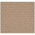 Capel Rugs Creative Concepts Grassy Mountain - Rectangle 7