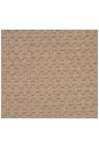 Capel Rugs Creative Concepts Grassy Mountain - Rectangle 12'0