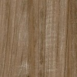 Armstrong Premier Classics Laminate Flooring:  Coastal Trail 8mm Laminate L3076