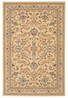 Nourison Collection Library Chambord (CM14-LGD) Rectangle 5'6