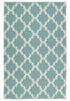 Nourison Collection Library Dakota (DA06-IVY) Runner 2'3