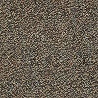 "Shaw Swizzle: Hide N Seek 24"" x 24"" Carpet Tile 54440 40200"