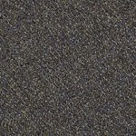 "Shaw Change In Attitude Carpet Tile J0111: Adrenaline Rush 24"" x 24"" Carpet Tile J0111 12710"